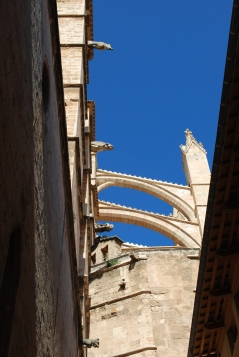 Flying Buttress of Palma